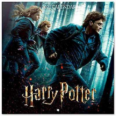 Erik® Calendrier Mural 2020-2021 Harry Potter | 16 Mois, 30x30 cm | De Septembre 2020 à Décembre 2021